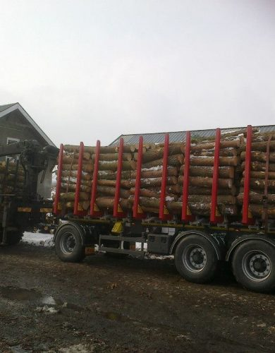 transport-drewna-palet-i-logistyka (1)